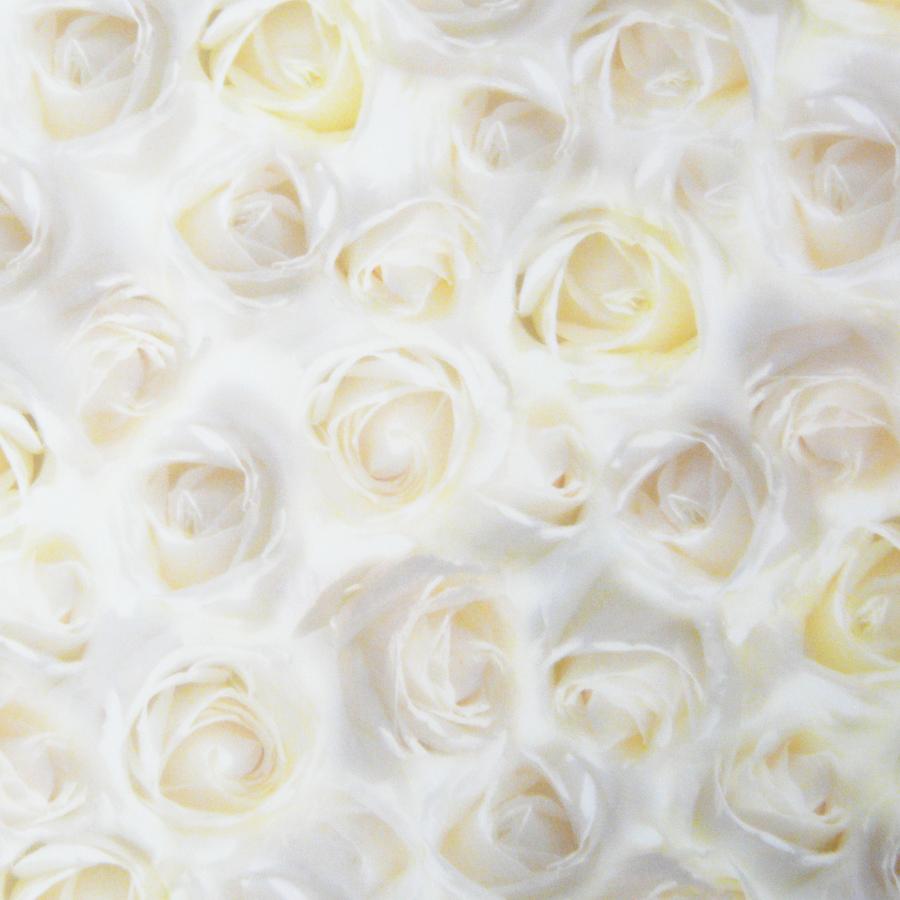 Motivkarton wei e rosen f r wundersch ne hochzeitskarten for Weisse dekoartikel