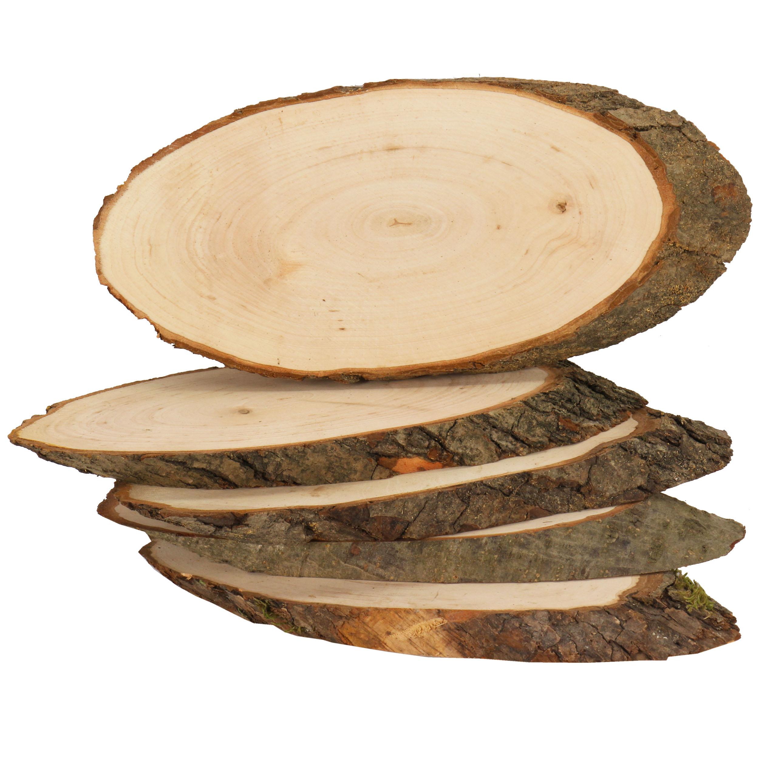 rindenscheibe oval 23 26 cm lang einzeln basteln mit holz macht spa. Black Bedroom Furniture Sets. Home Design Ideas